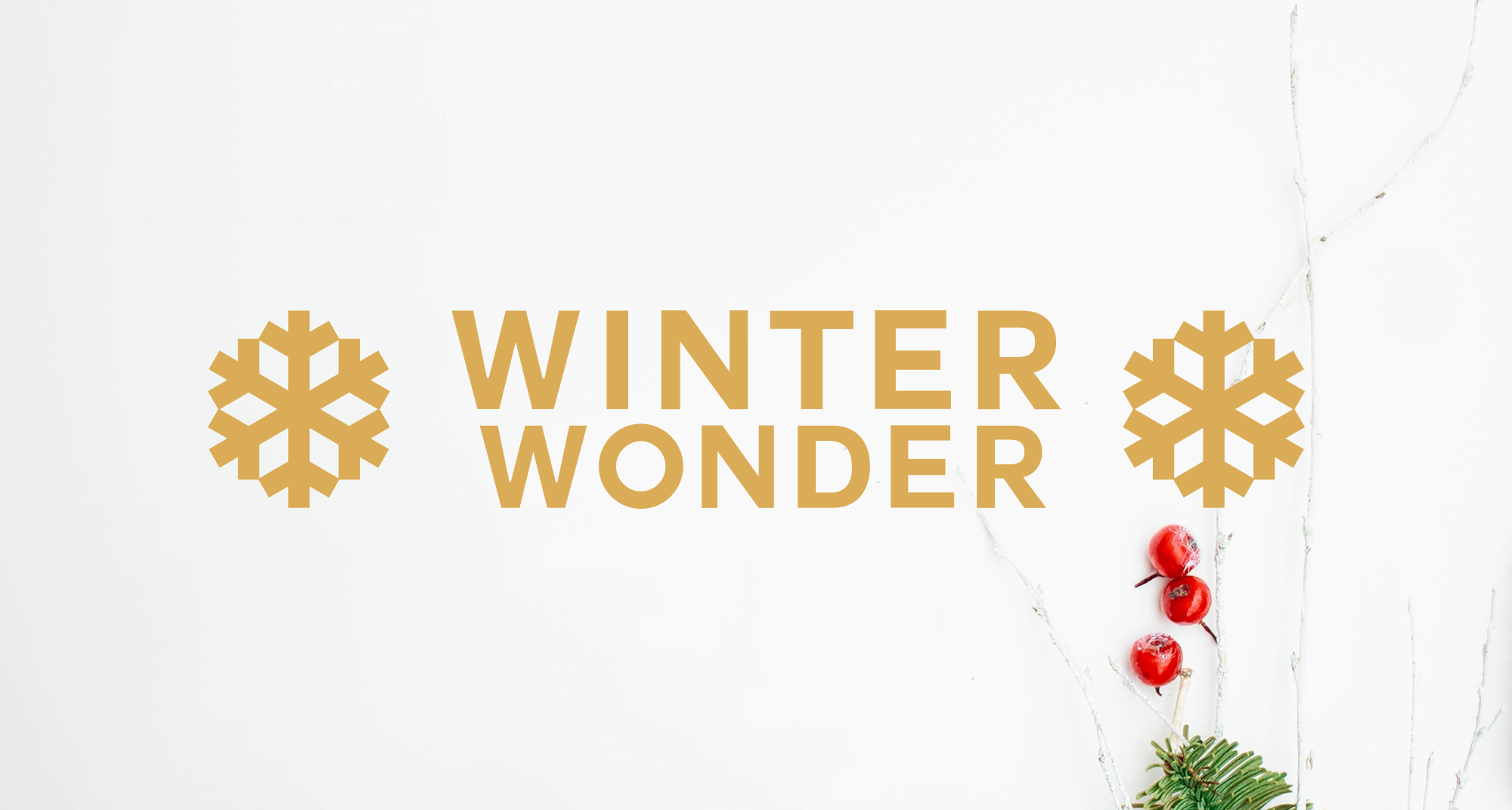 Winter Wonder @ Chinese American Museum of Chicago | Chicago | Illinois | United States